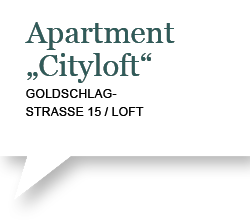 Apartment Cityloft